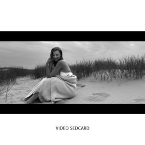 Model Videosedcard